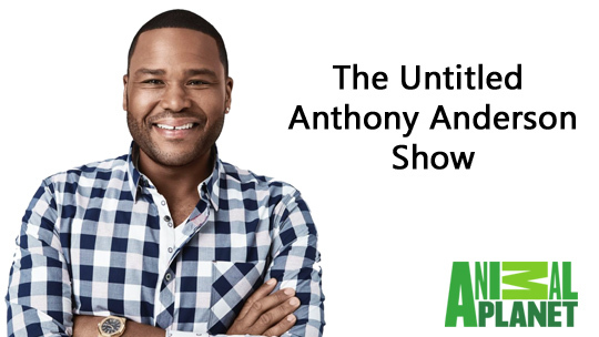 Untitled Anthony Anderson Show
